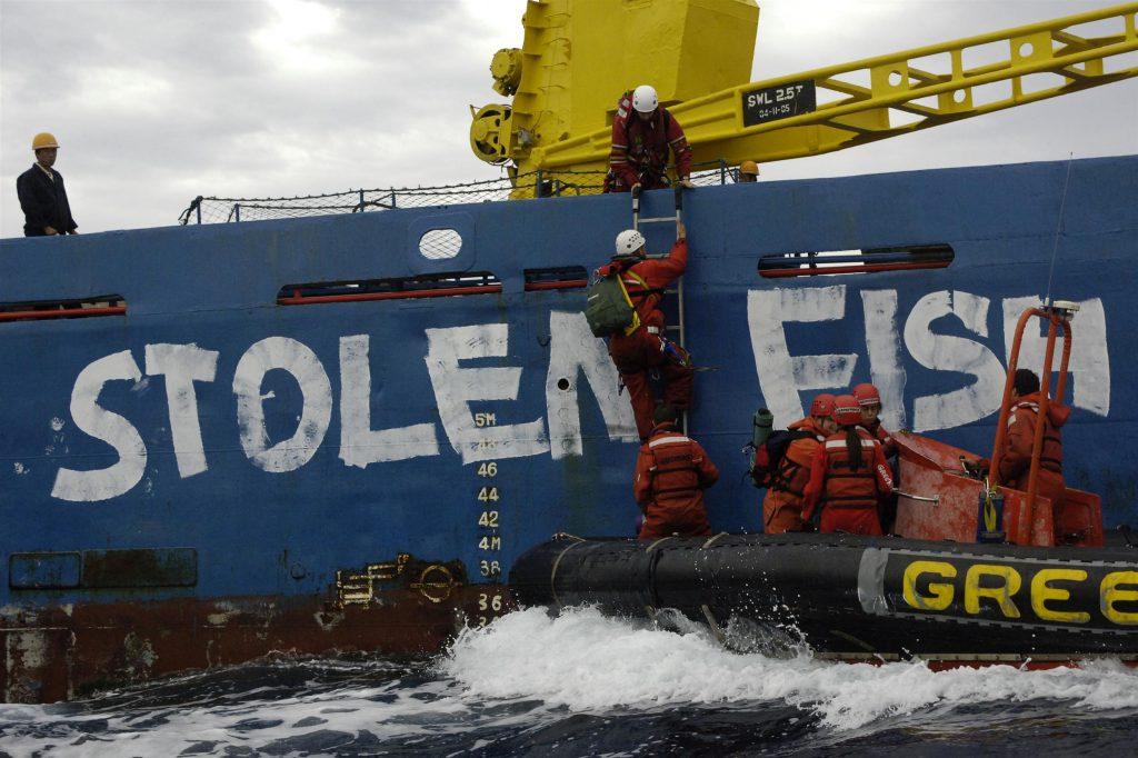 Frieden auf Kosten der Umwelt: Überfischung und Ressourcenknappheit