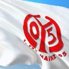 Mainz 05 - Erfolgreich auf Kosten des Steuerzahlers
